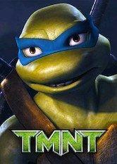 Libro TMNT: Tortugas ninja jóvenes mutantes