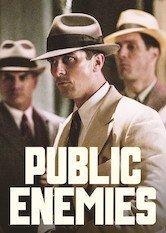 Netflix Enemigos públicos